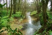 Emral Gardens Caravan Park, Bangor on Dee,Wrexham,Wales